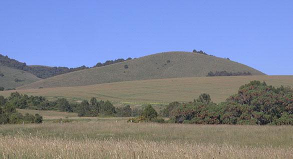 Aberdare Mountains